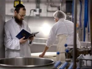 Koschere-Milchproduktion