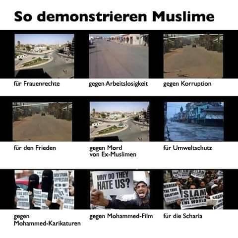 Muslime_Demos